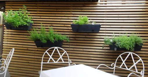 Herbs at Pöllöwaari terrace - reijosfood.com